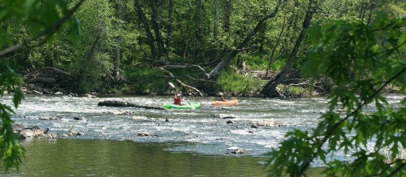photo of two kayakers tackling minor rapids with green trees in foreground and background