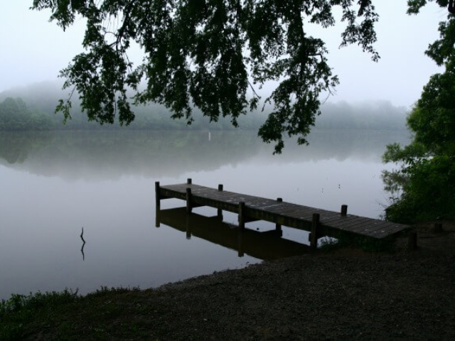 photo of the dock at Saxapahaw Lake Paddle Access on a misty morning with trees in the foreground and mist over the lake and far trees