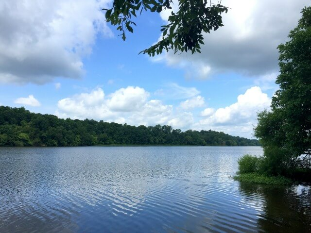 photo looking out over Saxapahaw Lake on a sunny day with wind riffling the water, a bright blue sky, puffy white clouds, and green trees in the foreground and frame