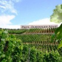 The Hermitage Hill provides ideal conditions for Syrah, the stuff of Jaboulet's La Chapelle.