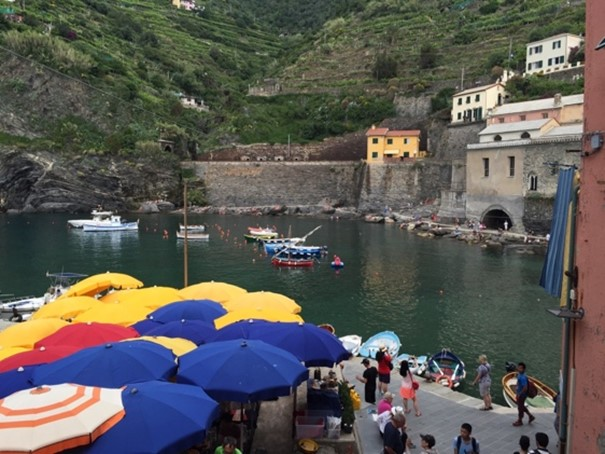 Vernazza, with terraces above