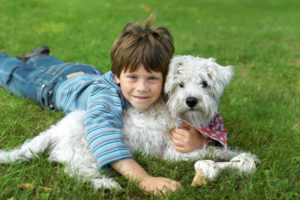 little-boy-and-dog