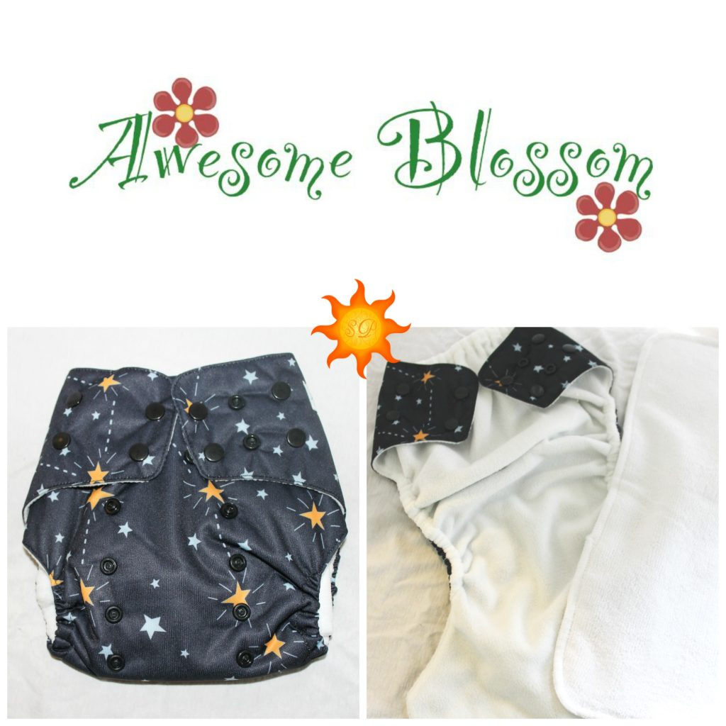 AwesomeBlossomReview1