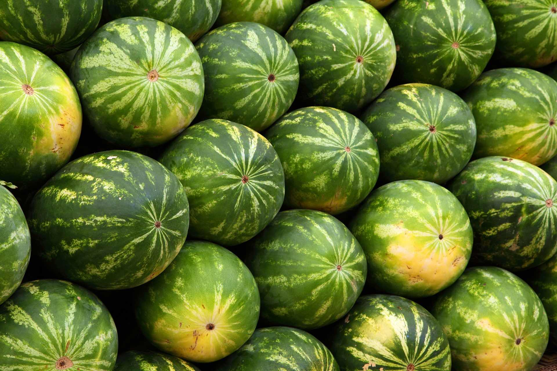 watermelons-2636_1920