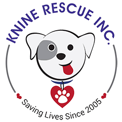 Knine Rescue