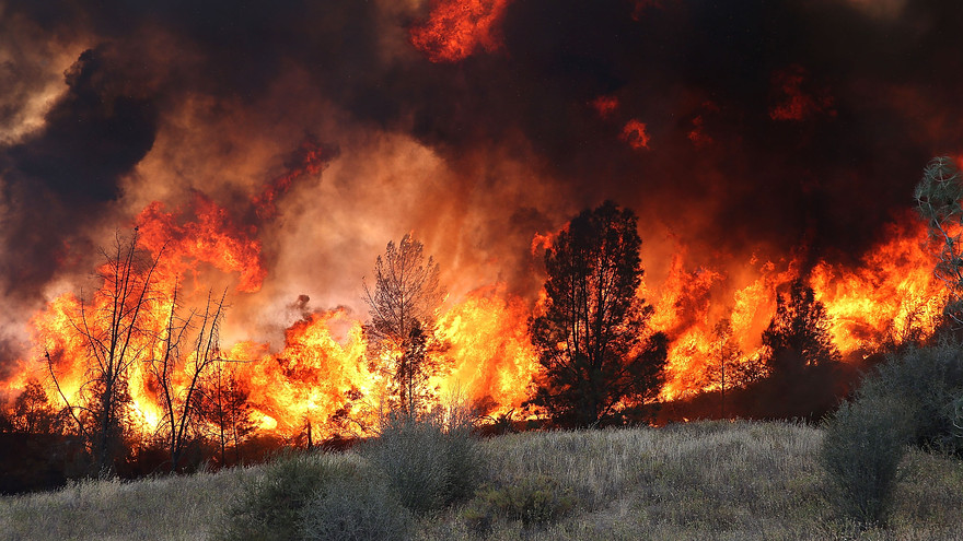reasonale cause penalty abatement fire, casualty, natural disaster