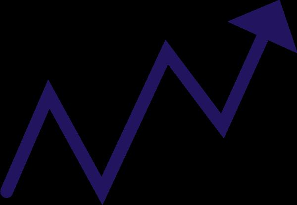 S-Corp Stock
