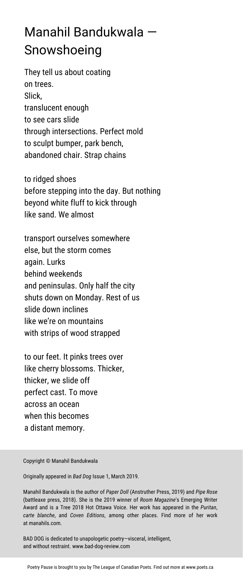 Poem author and title: Manahil Bandukwala — Snowshoeing Poem: They tell us about coating on trees. Slick, translucent enough to see cars slide through intersections. Perfect mold to sculpt bumper, park bench, abandoned chair. Strap chains to ridged shoes before stepping into the day. But nothing beyond white fluff to kick through like sand. We almost transport ourselves somewhere else, but the storm comes again. Lurks behind weekends and peninsulas. Only half the city shuts down on Monday. Rest of us slide down inclines like we're on mountains with strips of wood strapped to our feet. It pinks trees over like cherry blossoms. Thicker, thicker, we slide off perfect cast. To move across an ocean when this becomes a distant memory. End of poem. Copyright © Manahil Bandukwala Originally appeared in Bad Dog Issue 1, March 2019. Manahil Bandukwala is the author of Paper Doll (Anstruther Press, 2019) and Pipe Rose (battleaxe press, 2018). She is the 2019 winner of Room Magazine's Emerging Writer Award and is a Tree 2018 Hot Ottawa Voice. Her work has appeared in the Puritan, carte blanche, and Coven Editions, among other places. Find more of her work at manahils.com. BAD DOG is dedicated to unapologetic poetry—visceral, intelligent, and without restraint. www.bad-dog-review.com