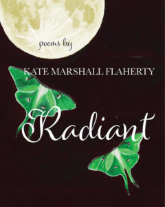 Cover of book Radiant by Kate Marshall Flaherty