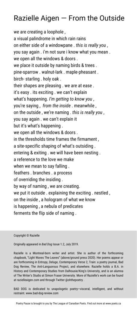 """Poem author and title: Razielle Aigen— From the Outside Poem: we are creating a loophole ,  a visual palindrome in which rain rains  on either side of a windowpane . this is really you ,  you say again . i'm not sure i know what you mean .  we open all the windows & doors .  we place it outside by naming birds & trees .  pine-sparrow . walnut-lark . maple-pheasant .  birch- starling . holy oak .  their shapes are pleasing . we are at ease . it's easy . its exciting . we can't explain  what's happening. I'm getting to know you ,  you're saying ,  from the inside . meanwhile ,  on the outside , we're naming . this is really you ,  you say again . we can't explain it  but it's what's happening .  we open all the windows & doors .  in the thresholds time frames the firmament , a site-specific shaping of what's outsiding .  entering & exiting . we will have been nesting .  a reference to the love we make  when we mean to say falling .  feathers . branches . a process  of overriding the insiding .  by way of naming , we are creating.  we put it outside . explaining the exciting . nestled , on the inside , a hologram of what we know  is happening , a nebula of predicates  ferments the flip side of naming . End of Poem.  Copyright © Razielle Originally appeared in Bad Dog Issue 1.2, July 2019. Razielle is a Montreal-born writer and artist. She is author of the forthcoming chapbook, """"Light Waves The Leaves"""" (above/ground press 2020). Her poems appear or are forthcoming in Entropy, Deluge, Contemporary Verse 2, Train: a poetry journal, Bad Dog Review, The Anti-Languorous Project, and elsewhere. Razielle holds a B.A. in History and Contemporary Studies from Dalhousie/King's University, and is an alumna of The Writer's Studio at Simon Fraser University. More of Razielle's work can be found at razielleaigen.com and through Twitter @ohthepoetry .  BAD DOG is dedicated to unapologetic poetry—visceral, intelligent, and without restraint. www.bad-dog-review.com"""