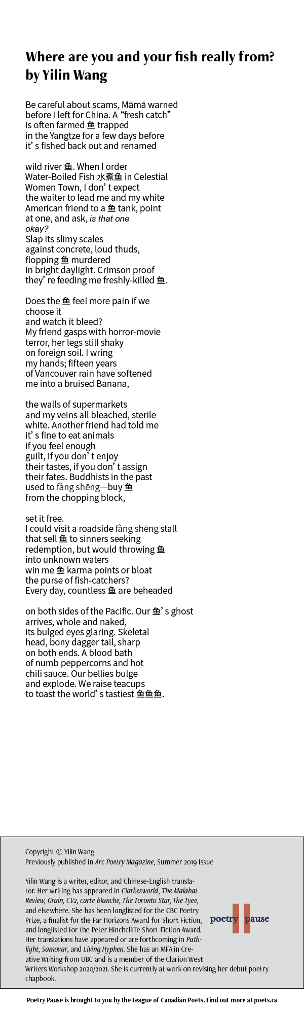 """Poet Name: Yilin Wang Poem Title: Where are you and your fish really from? Poem: Be careful about scams, Māmā warned before I left for China. A """"fresh catch"""" is often farmed 鱼 trapped in the Yangtze for a few days before it's fished back out and renamed wild river 鱼. When I order Water-Boiled Fish 水煮鱼 in Celestial Women Town, I don't expect the waiter to lead me and my white American friend to a 鱼 tank, point at one, and ask, is that one okay? Slap its slimy scales against concrete, loud thuds, flopping 鱼 murdered in bright daylight. Crimson proof they're feeding me freshly-killed 鱼. Does the 鱼 feel more pain if we choose it and watch it bleed? My friend gasps with horror-movie terror, her legs still shaky on foreign soil. I wring my hands; fifteen years of Vancouver rain have softened me into a bruised Banana, the walls of supermarkets and my veins all bleached, sterile white. Another friend had told me it's fine to eat animals if you feel enough guilt, if you don't enjoy their tastes, if you don't assign their fates. Buddhists in the past used to fàng shēng—buy 鱼 from the chopping block, set it free. I could visit a roadside fàng shēng stall that sell 鱼 to sinners seeking redemption, but would throwing 鱼 into unknown waters win me 鱼 karma points or bloat the purse of fish-catchers? Every day, countless 鱼 are beheaded on both sides of the Pacific. Our 鱼's ghost arrives, whole and naked, its bulged eyes glaring. Skeletal head, bony dagger tail, sharp on both ends. A blood bath of numb peppercorns and hot chili sauce. Our bellies bulge and explode. We raise teacups to toast the world's tastiest 鱼鱼鱼. End of Poem. Credits: Copyright © Yilin Wang Previously published in Arc Poetry Magazine, Summer 2019 Issue Yilin Wang is a writer, editor, and Chinese-English translator. Her writing has appeared in Clarkesworld, The Malahat Review, Grain, CV2, carte blanche, The Toronto Star, The Tyee, and elsewhere. She has been longlisted for the CBC Poetry Prize, a finalist for the F"""