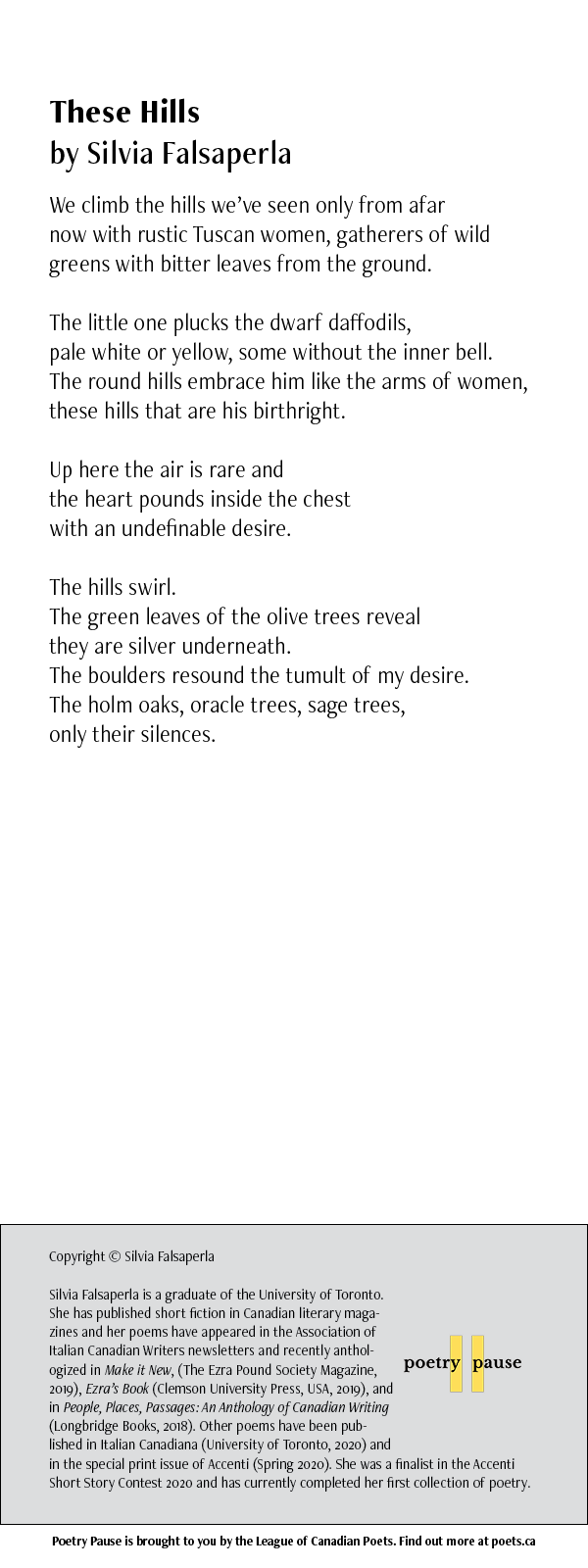 Poet: Silvia Falsaperla Poem title: These Hills Poem: We climb the hills we've seen only from afar now with rustic Tuscan women, gatherers of wild greens with bitter leaves from the ground. The little one plucks the dwarf daffodils, pale white or yellow, some without the inner bell. The round hills embrace him like the arms of women, these hills that are his birthright. Up here the air is rare and the heart pounds inside the chest with an undefinable desire. The hills swirl. The green leaves of the olive trees reveal they are silver underneath. The boulders resound the tumult of my desire. The holm oaks, oracle trees, sage trees, only their silences. End of poem. Credits: Copyright © Silvia Falsaperla Silvia Falsaperla is a graduate of the University of Toronto. She has published short fiction in Canadian literary magazines and her poems have appeared in the Association of Italian Canadian Writers newsletters and recently anthologized in Make it New, (The Ezra Pound Society Magazine, 2019), Ezra's Book (Clemson University Press, USA, 2019), and in People, Places, Passages: An Anthology of Canadian Writing (Longbridge Books, 2018). Other poems have been published in Italian Canadiana (University of Toronto, 2020) and in the special print issue of Accenti (Spring 2020). She was a finalist in the Accenti Short Story Contest 2020 and has currently completed her first collection of poetry.
