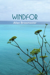 Just Cross: a review of Windfor by Allan Briesmaster
