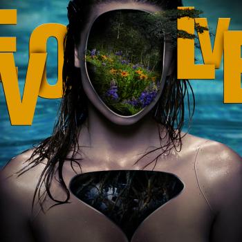 Evolve Cover Art