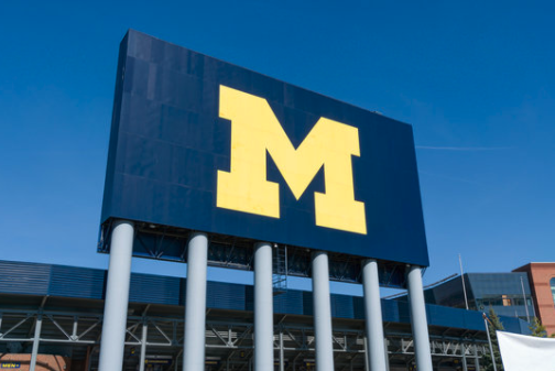 Michigan Loves Sports & its Sports Teams!
