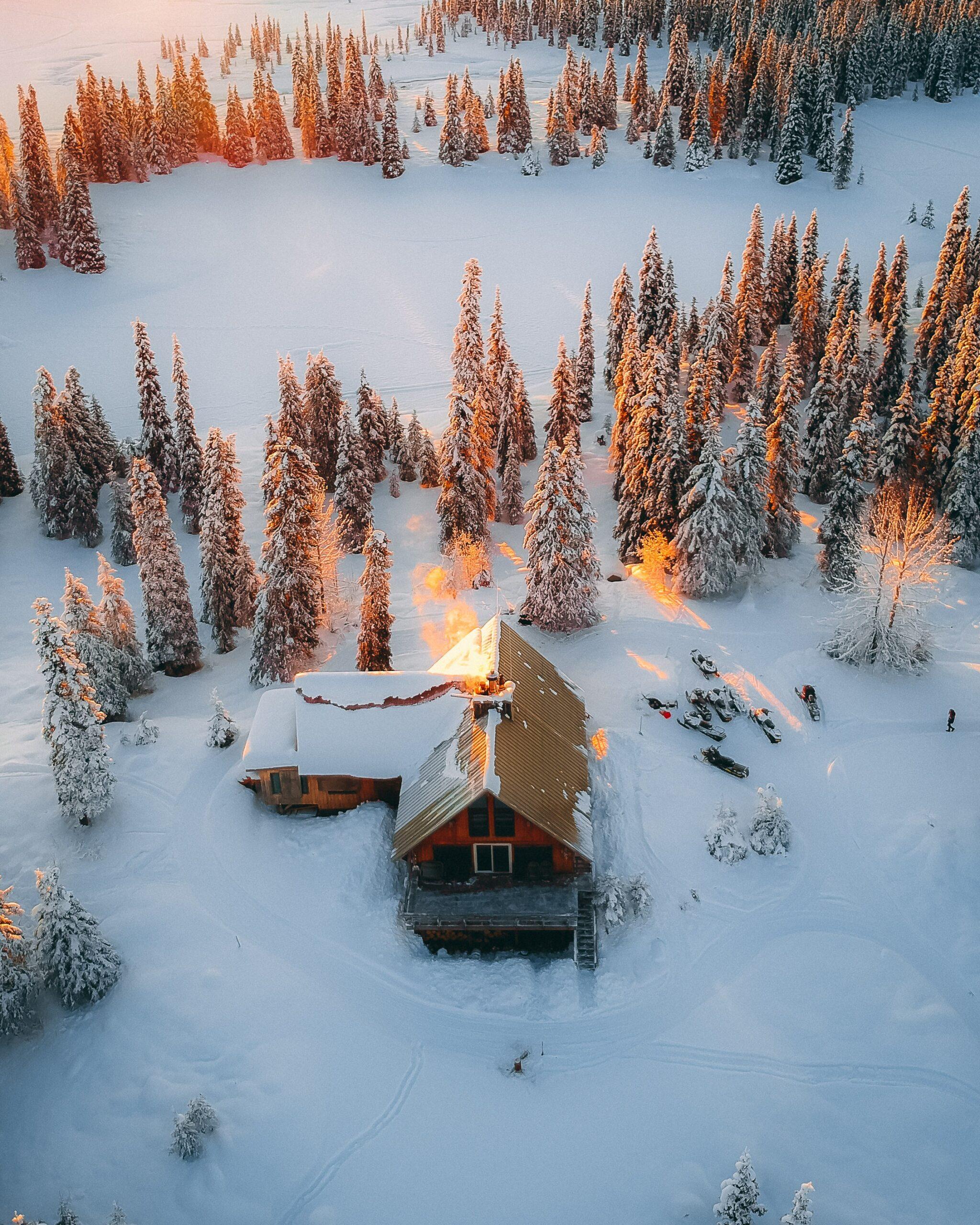 Winter Market Trends