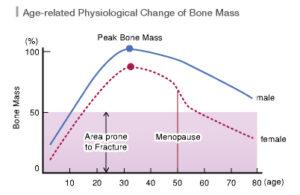physiologicl change of bone mass