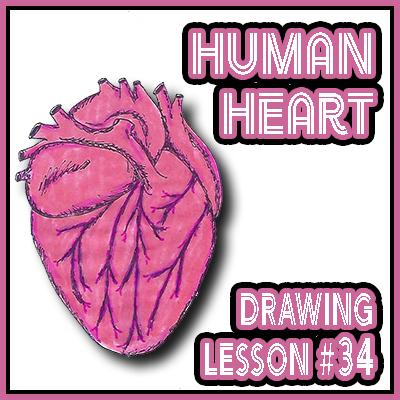 """Drawing in Ezekiel, """"Human Heart"""""""