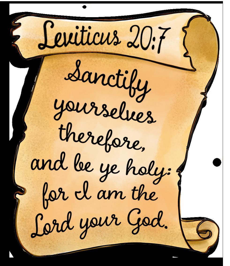 Scroll Leviticus