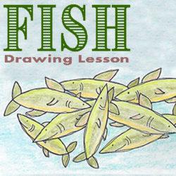 "Drawing Lesson – ""Fish"""