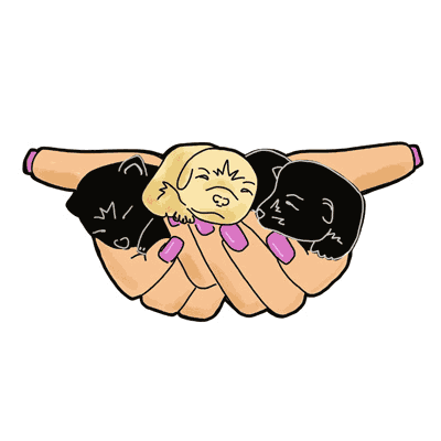 Hand Full of Puppies