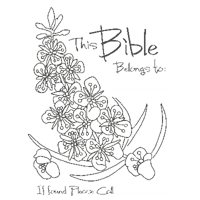 This Bible Belongs to . . .