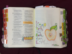 Apple Print - printed with Psalms 17:8