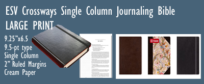 Bible Ad ESV Journaling Bible LARGE print jpg