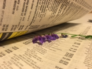 Flower going into Phone Book