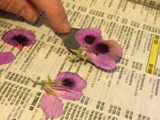 CBJ Project #3A – Three Simple Steps To Press Flowers