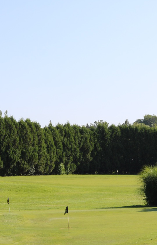 Fairways Golf Centre Short Game Area