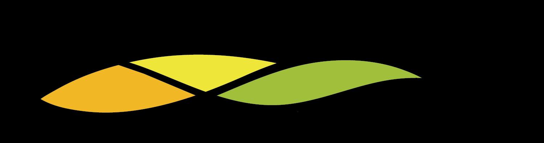 Rural Health Service Providers Network