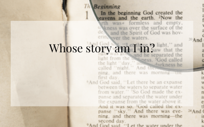 Whose Story Am I In?