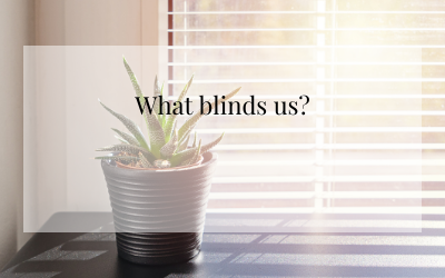 What Blinds Us?