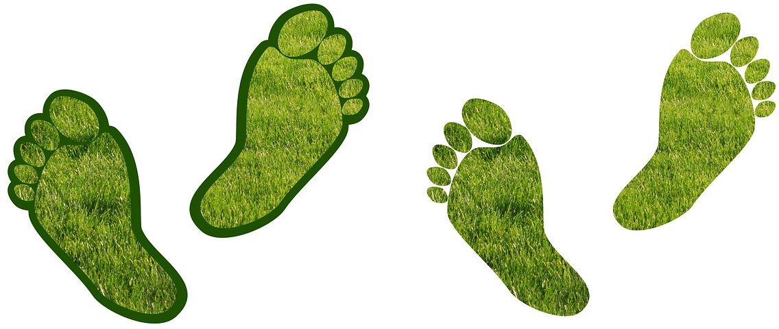 carbon-footprints