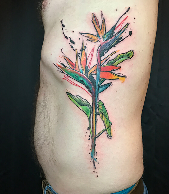 Bird of paridise watercolor tattoo