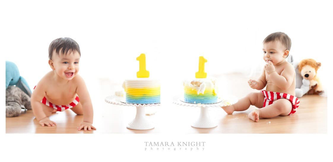 Smash the cake session for twin boys by Orlando photographer.