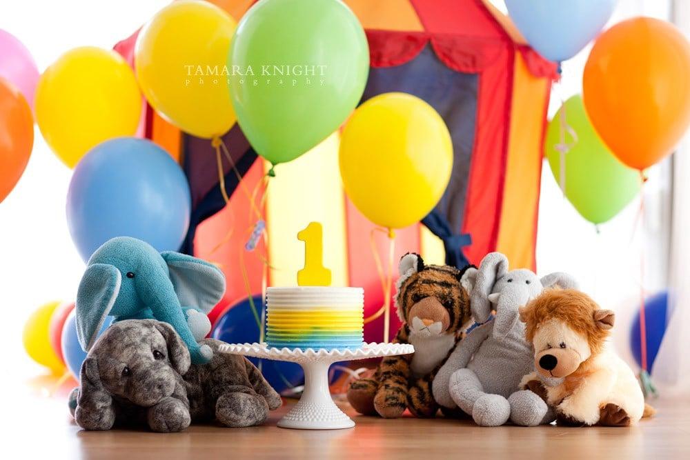 Smash the cake session by Orlando photographer. Circus theme, stuffed animals, cake.