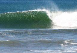 Beach Activities around Playa Grande include Surfing in Costa Rica
