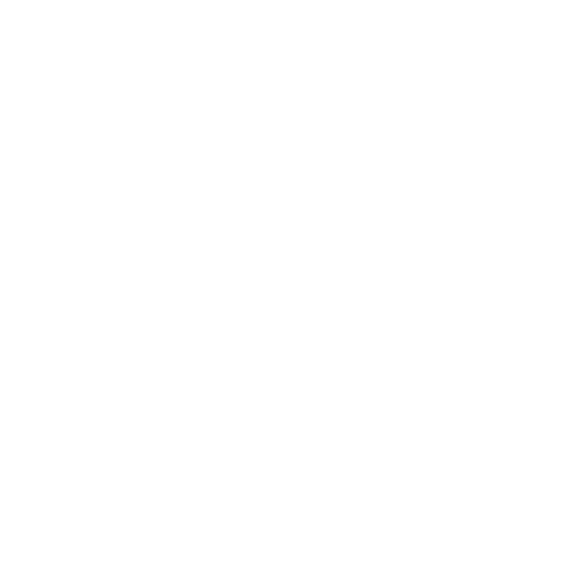 World Web Icon