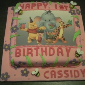 Girls cake  GC-005