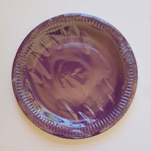 Purple colourful party plates