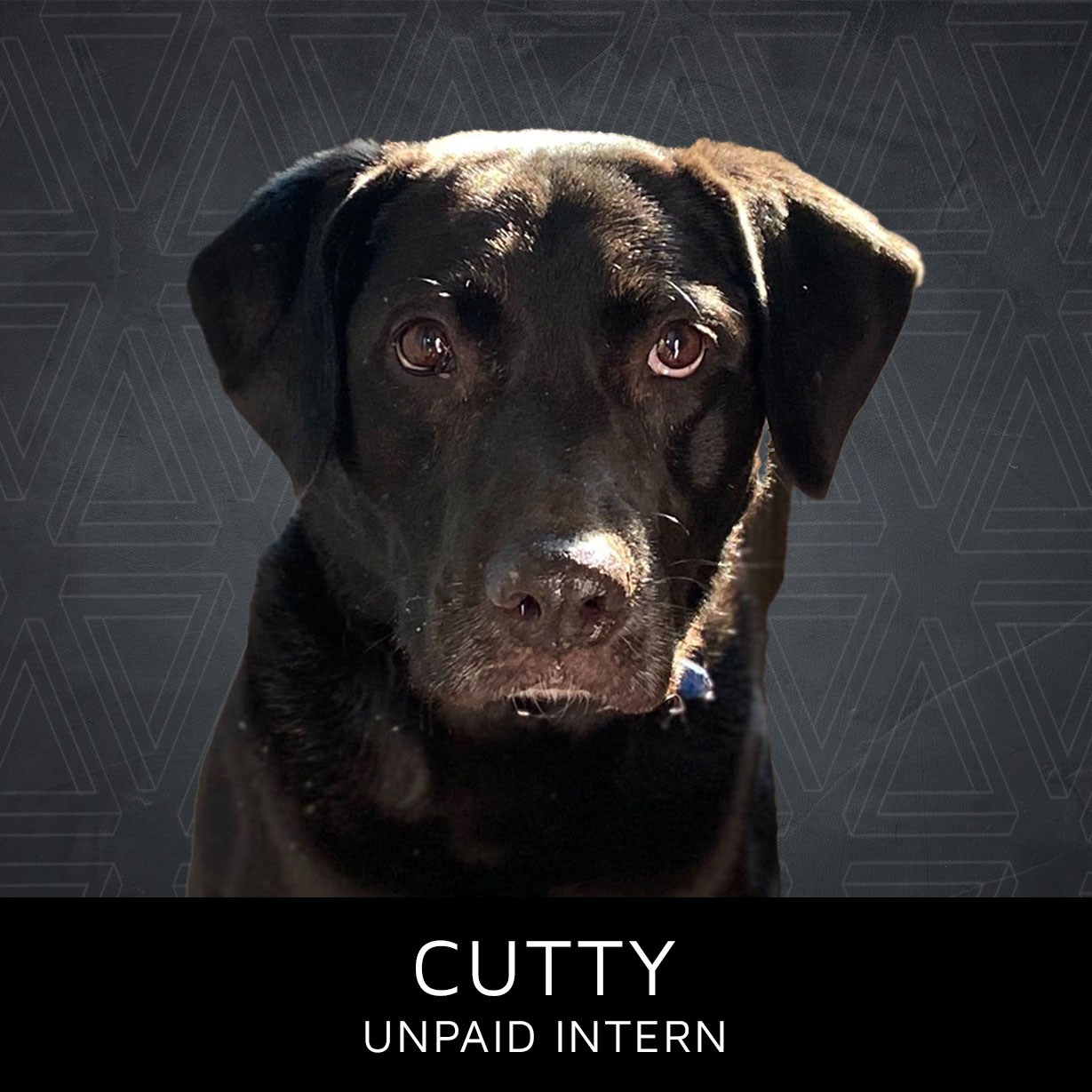 Cutty_color