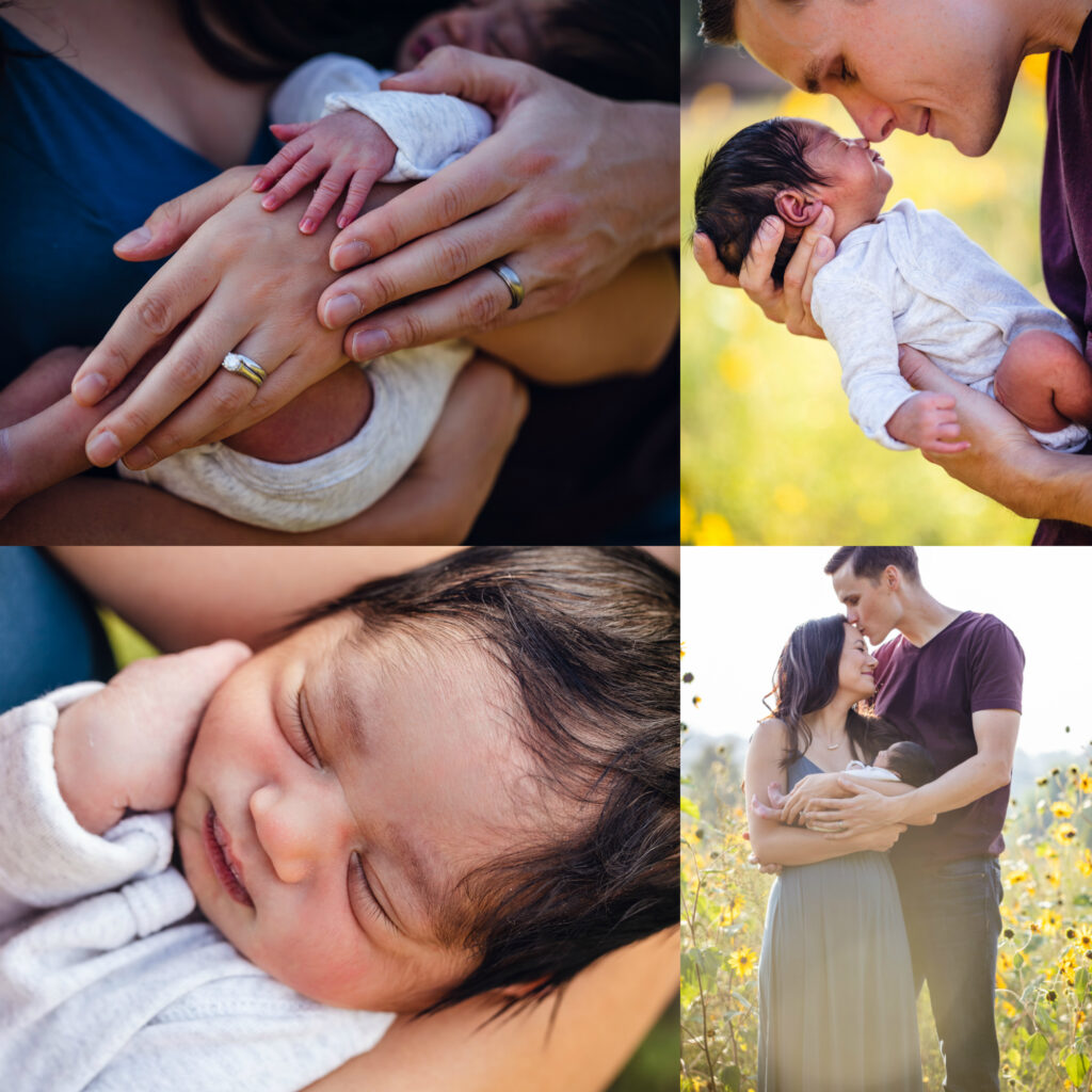 pretty please photography family photography newborn photography