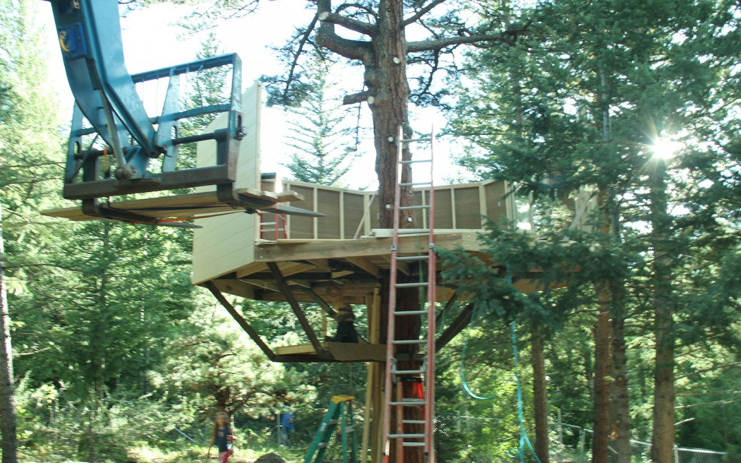 Custom Treehouses