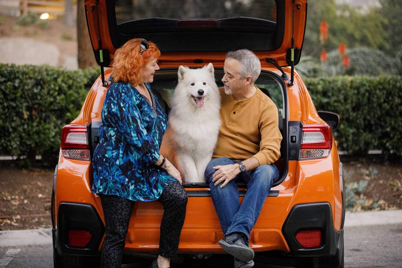 Alan & Heidi dog family