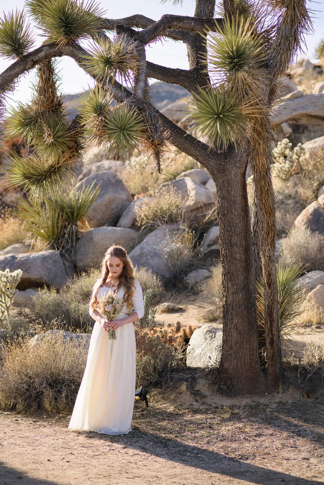 017_Alan_and_Heidi_Wedding_Abby_Tyler
