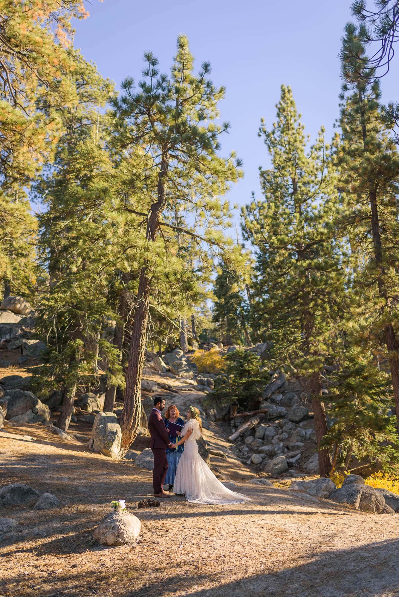 018_Alan_and_Heidi_Wedding_Natalie_Mike