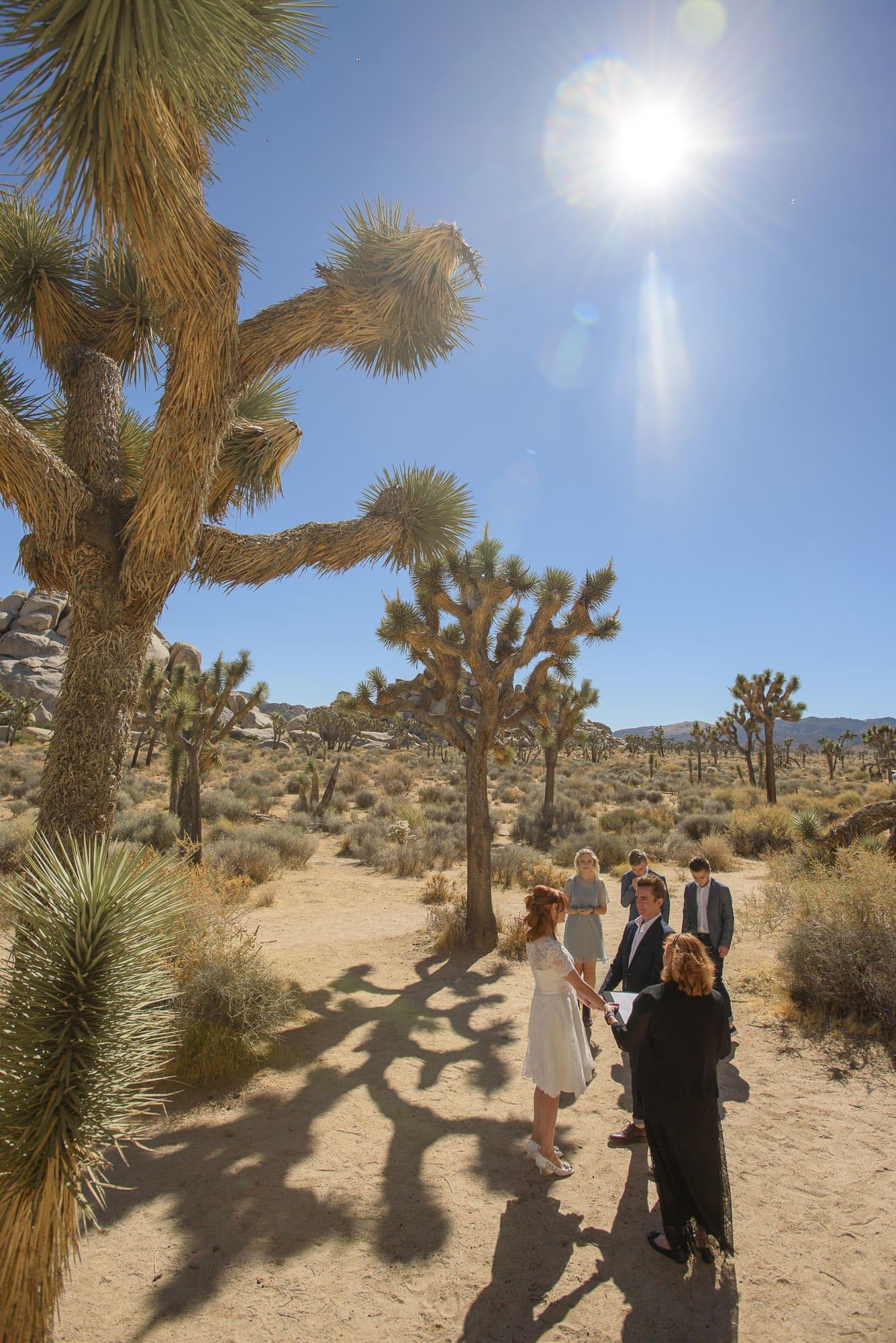 003_Alan_and_Heidi_Joshua_Tree_Destination_Wedding