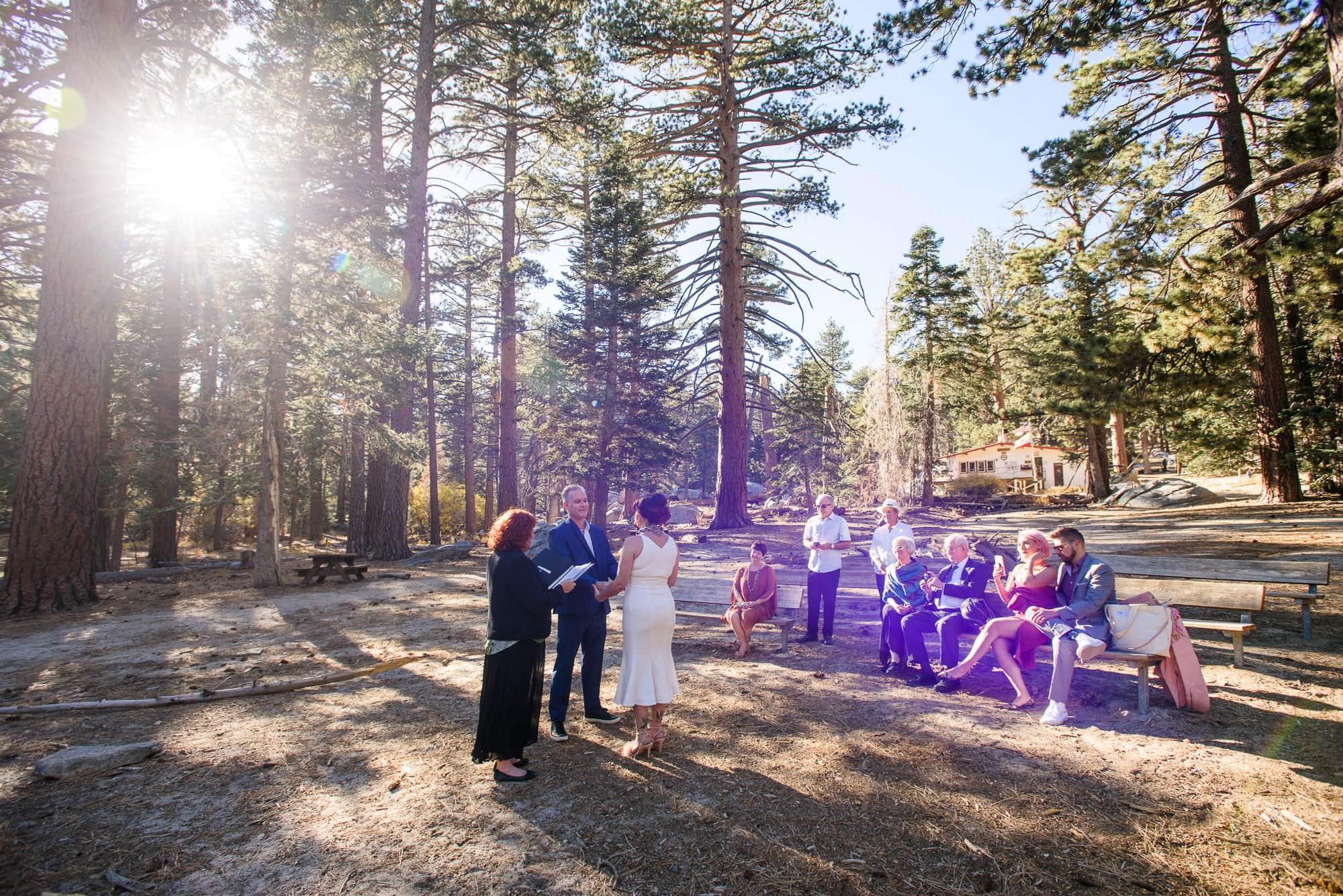 012_Alan_and_Heidi_Palm_Springs_Tram_Wedding